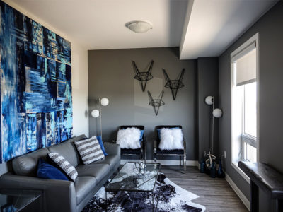 living room decor grey
